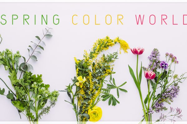 SPRING COLOR WORLD